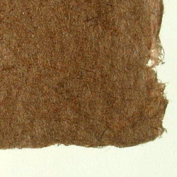 画像1: 杉皮紙1 (1)