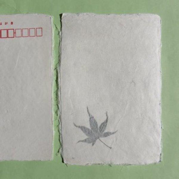 画像1: 美濃和紙 葉入り耳付はがき(大光工房)5枚 (1)