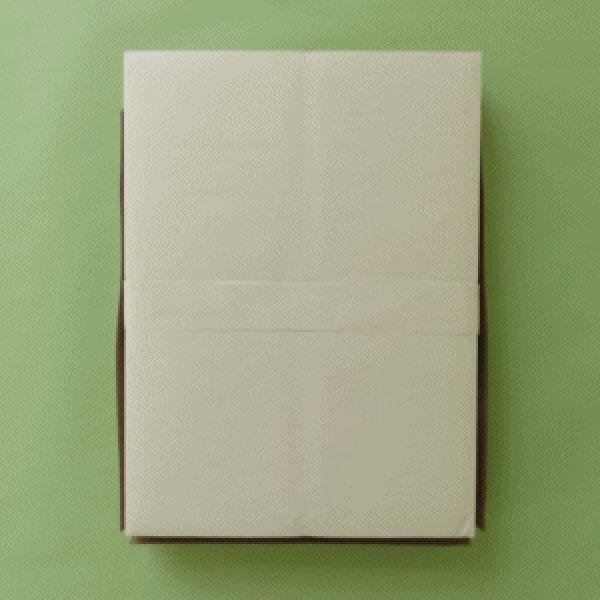 画像1: 因州 純三椏半紙 (1)