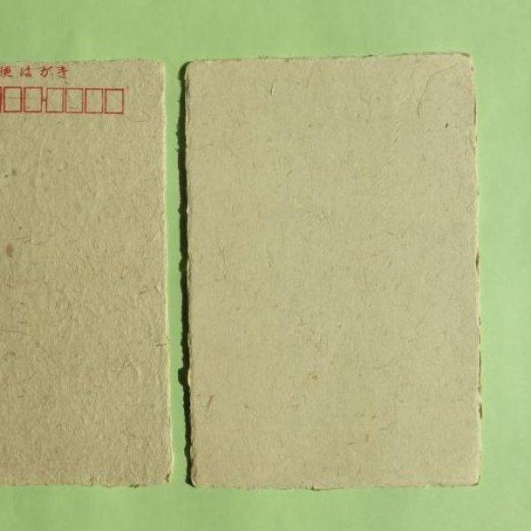 画像1: 市川大門和紙 ぶどうのはがき(未晒)10枚 (1)